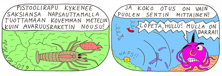 Vesa-Heikki Hietanen Kuplivaa elämää 219
