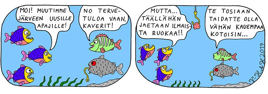 Vesa-Heikki Hietanen Kuplivaa elämää 228